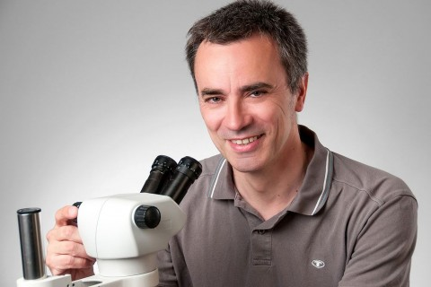 Dr. Jörg Salamon